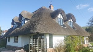 Thatched Cottage 5